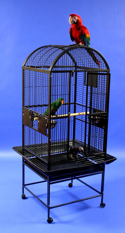 Classico XL Dometop Bird Cage by AE Cage Co