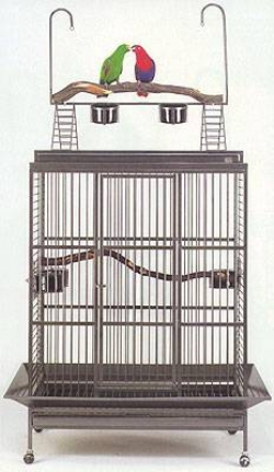 Click to see the Grande Playtop Parrot Cage