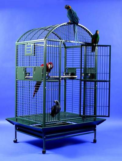 Grey Palace XL Dometop Bird Cage by AE Cage Co