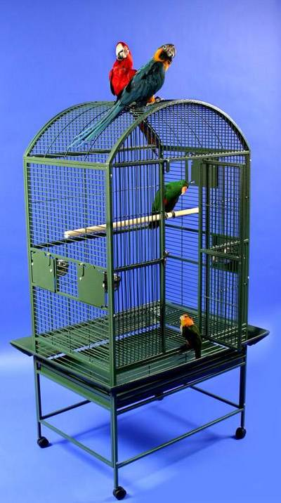 Grey Palace Dometop Bird Cage by AE Cage Co