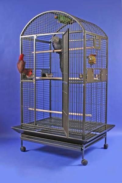 Macaw Mansion Dometop Bird Cage by AE Cage Co