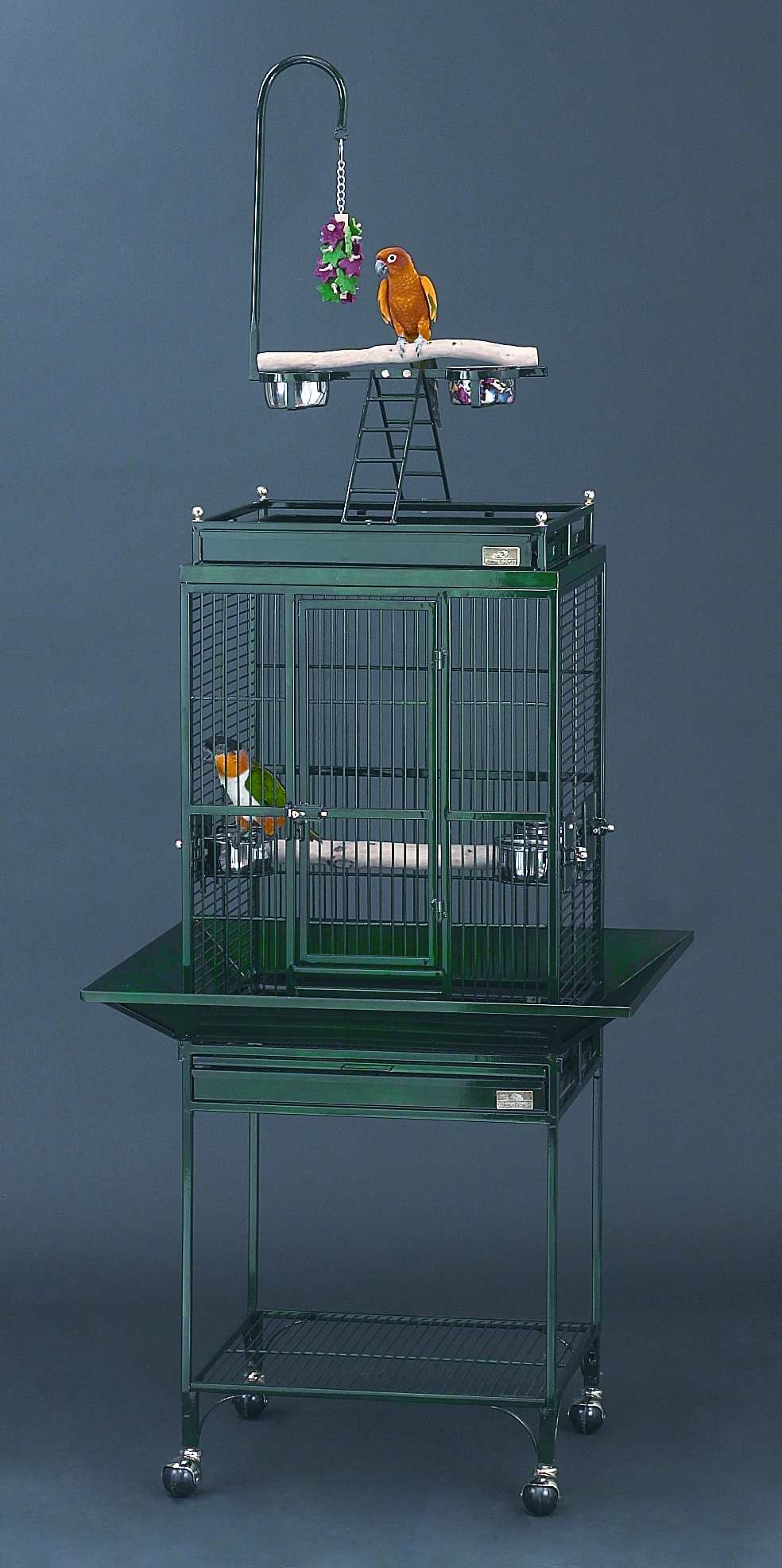 Click to see the Nina Playtop Bird Cage