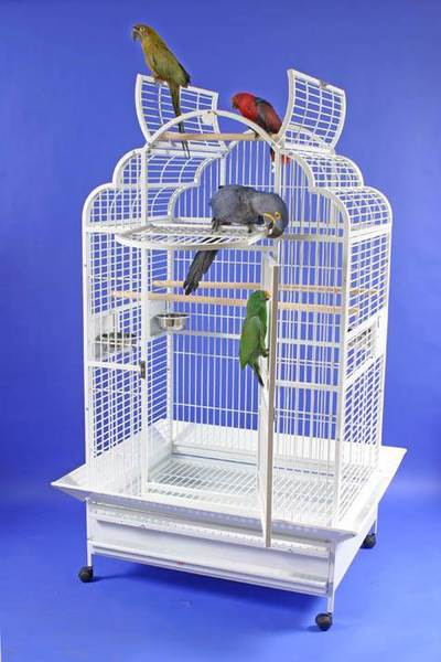 "Victorian Retreat 40""x32"" Parrot Cage"